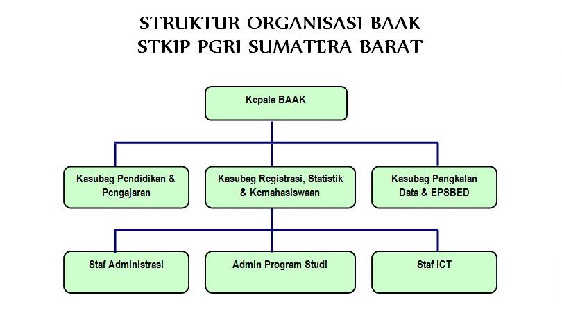 Struktur Organisasi BAAK STKIP PGRI Sumatera Barat